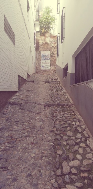 Calle Museo Sefardi Granada